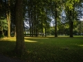 Meinerzhagen 36