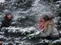 Outdoor Winter 17