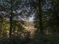 Plettenberg 422