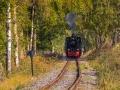 Eisenbahn 78