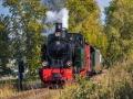 Eisenbahn 79