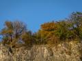 Herbst 122
