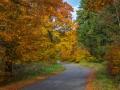 Herbst 136