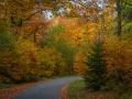 Herbst 137