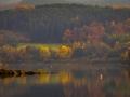 Herbst 141