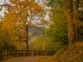 Herbst 149
