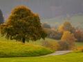 Herbst 153