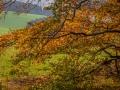 Herbst 164