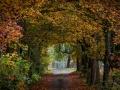 Herbst 26