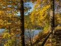 Herbst 34