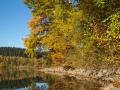 Herbst 36