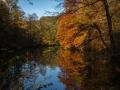 Herbst 39