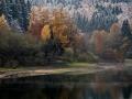 Herbst 43