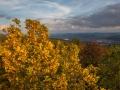Herbst 73