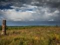 Landschaft 103