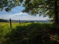 Landschaft 141