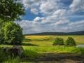Landschaft 38
