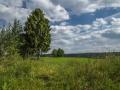 Landschaft 39