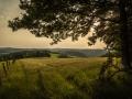 Landschaft 45