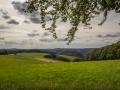 Landschaft 55