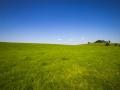 Landschaft 63