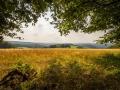 Landschaft 68