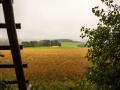 Landschaft 69