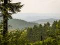 Landschaft 70
