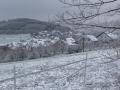 Winter 42