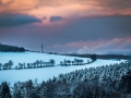 Winter 49