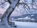 Winter 54