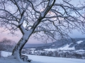 Winter 55