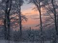 Winter 56
