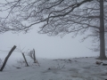 Winter 60