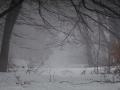 Winter 64