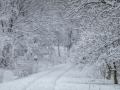 Winter 68