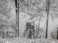 Winter 71
