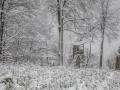 Winter 72