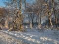 Winter 73