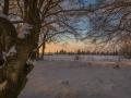 Winter 75