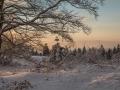 Winter 77