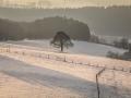 Winter 82