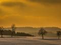 Winter 84