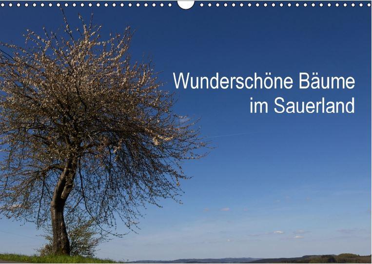Wunderschöne Bäume im Sauerland Kalender 2018